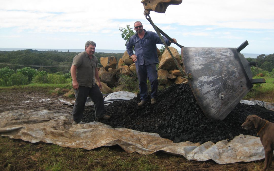 Biochar gone to the cows? You bet